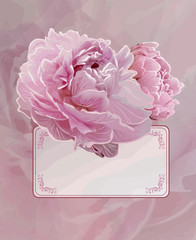 Vintage background with Pink peony flowers