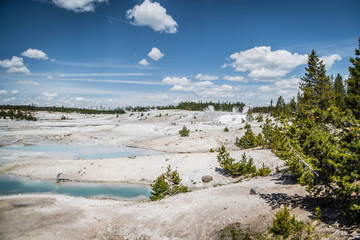 Beautiful nature: a colorful landscape with hot springs in the Yellowstone National Park, blue sky, green forest and white and colorful sand.