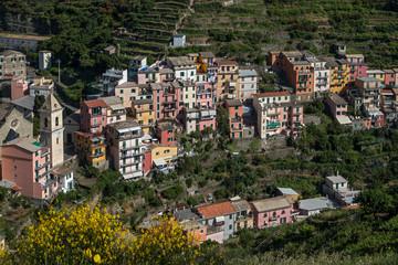 Manarola, village des Cinque Terre en Italy
