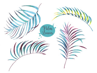 Hand-drawn watercolor floral illustration of the palm leaves. Natural drawing isolated on the white background. Tropical leaves
