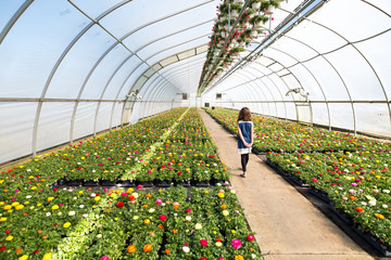 Girl walking along pathway in greenhouse