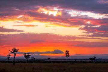 Sunrise over the Mara
