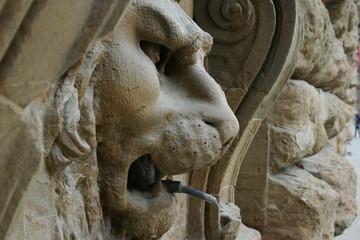 ピッティ宮殿のライオン