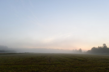 Foggy summer morning before dawn on a freshly mown field