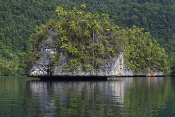 """Karst island archipelago, Triton Bay, Mainland New Guinea, Western Papua, Indonesian controlled New Guinea, on the Science et Images """"Expedition Papua, in the footsteps of Wallace"""", by Iris Foundation"""