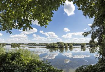 Foto auf Leinwand Fluss river Rhine near Walluf with reflection of clouds