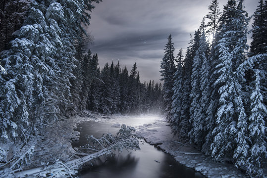 Scenic view of frozen river amidst snow covered trees
