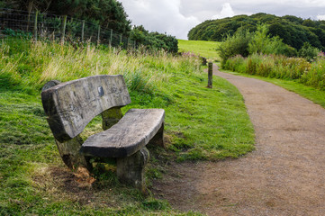 Wooden bench next to path