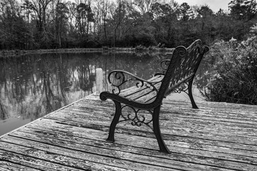 Bench on the Pond