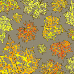 Autumn background, maple leaves  and paint splashes, drops, blots