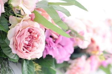 flower bush - pink flower