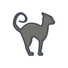 Halloween holiday colored icon black cat animal