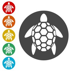Turtle silhouette icons set - Illustration