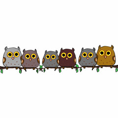 Cute owls sitting on a branch and white background