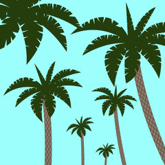 Bright vector green leaf floral banner template for summer beach party tropical palm background.