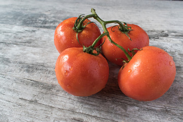 Isolated Tomatos on vine on gray table