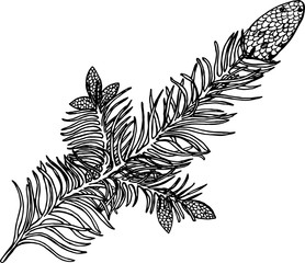 Black and white illustration of a branch. Bumps on a branch