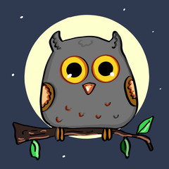 cute owl the moon background