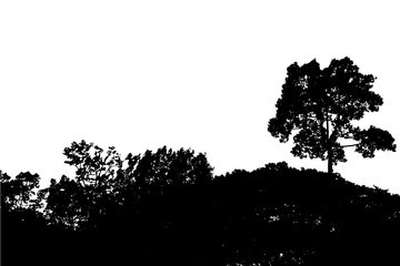 set of tree silhouette isolated on white background vector
