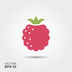 Raspberry flat icon with shadow