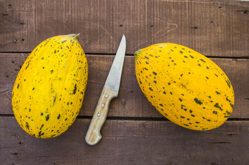 Wonderful melon pictures on a white background, pictures of ripe yellow turkish melons,