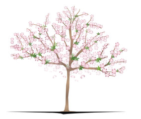 An illustration of a cherry-blossom tree