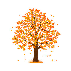 autumn fall tree