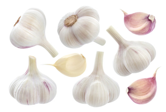Garlic isolated on white background. Collection