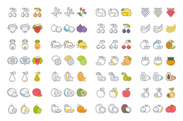 Set Vector Illustration of Fruits and Berries on White Backgroun