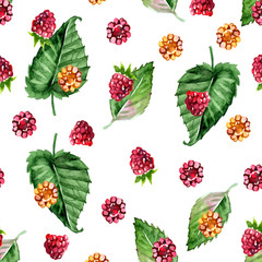 Pattern of raspberry painted watercolor. Fruit seamless pattern for menu and desserts, restaurants and cafes.