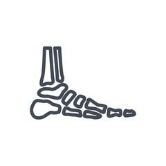 Bones line icon feet ankle