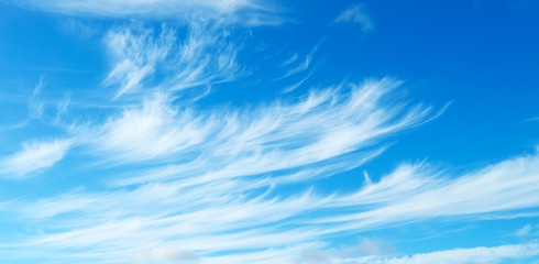 Blue sky with light cirrus clouds
