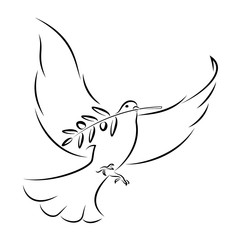 White Dove With Olive Branch. Vector Illustration.