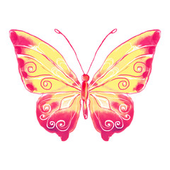 Pink Butterfly watercolor.Vector illustration