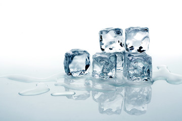 Ice cubes on white background with water and reflection