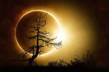 Total solar eclipse in dark sky