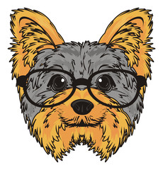 Wall Murals Hand drawn Sketch of animals Yorkshire terrier, york, yorkshire, terrier, dog, puppy, cartoon, pet, breed, england, glasses, muzzle
