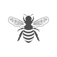 monochrome illustration with bee
