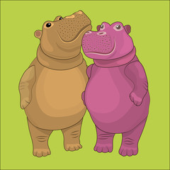 Loving couple of hippos