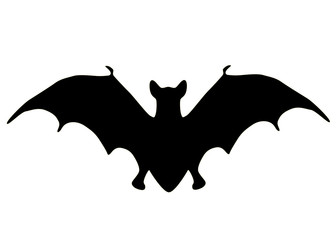 Silhouette of a bat isolated on a white background.