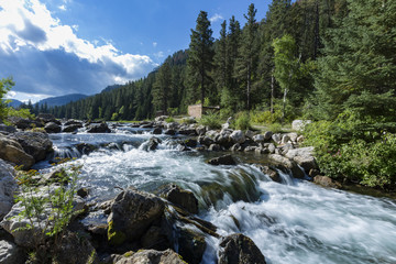 """Spearfish Canyon Stream"""