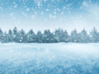 Winter background with snow and trees, blur landscape