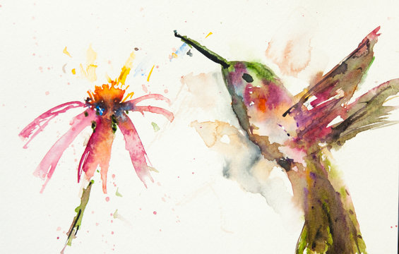 Hummingbird with flower, watercolor painting, lovely art