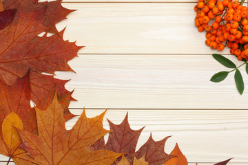 autumn background with colored leaves on wooden board. top view with copy space