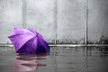 Purple umbrella floating concept. Flooded on street. .Waiting for help me after the rain. Black and white colors. Close up.