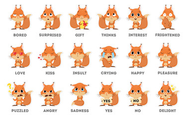 Squirrel emoji set.