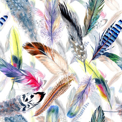 Motif de plumes d& 39 oiseau aquarelle de l& 39 aile. Plume d& 39 aquarelle pour le fond, la texture, le motif d& 39 emballage, le cadre ou la bordure.