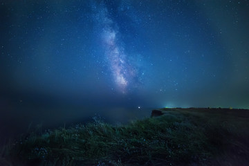 Night photo. Milky Way on a wild cliff near the sea. Wild wildflowers on a precipice.
