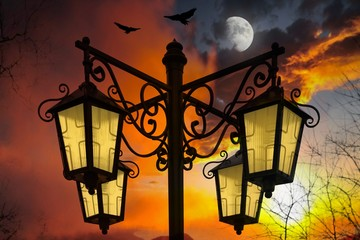 City park at night . Fiery orange sunset sky . Moon sky and clouds .  Beautiful clouds .  Streetlight against the background of the sky . Bird Migration at Sunset .