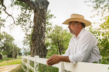 Mature man in cowboy hat looking out from ranch fence, Bridger, Montana, USA